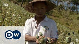 Opium Farmers in Myanmar   Journal Reporters