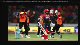 IPL 2016 Highlights Match 23 - SRH vs RCB Highlights