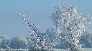 Nature: North Dakota Winter