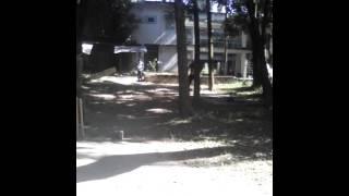 গ্রামের কিকেট খেলা
