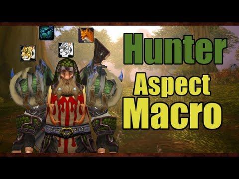 World of Warcraft Patch 5.0.4: Aspect Macro
