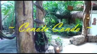 Cenote Condo Video Tour - 2017