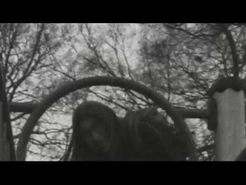 Xxx Mp4 Stupid Fucking Video 2 Mp4 3gp Sex