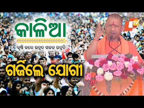 Xxx Mp4 UP CM Aditya Yoginath Targets Odisha Govt Says Kalia Scheme Is Into Corruption From The Day It Was 3gp Sex