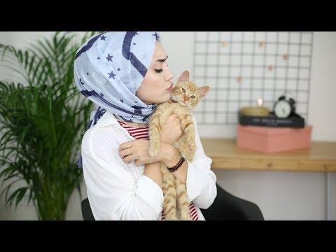 Kedimi Sahiplenme Hikayem,Youtube'a Ara Verme Nedenim│Makyaj&Sohbet