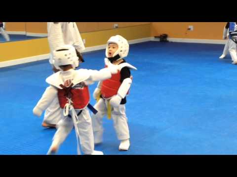 Xxx Mp4 Little Kids Sparring In Taekwondo 3gp Sex