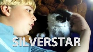 Silverstar - Miracle Cats