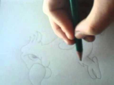 Jak narysować papugę
