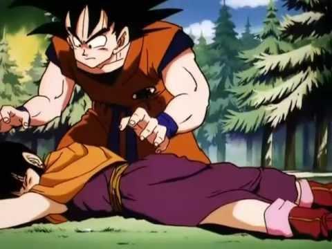 Goku Loves ChiChi