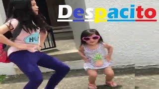 Little Girl Dance on Despacito Song