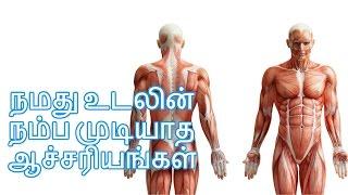 நமது உடலின் ஆச்சரியங்கள் - Facts about Human Body System in Tamil