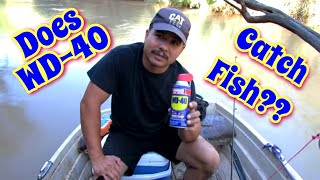 Fishing With WD 40