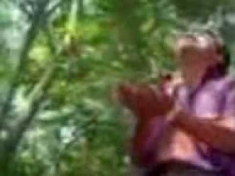 real kerala boy's  bp video_0917_w_2.3gp
