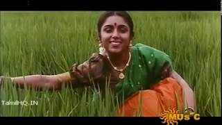 Thendral Vanthu Theendum - Illayaraja Song  Avatharam (1995) Video Song