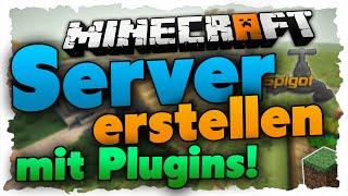 Minecraft Server Owner Und Admin Gesucht Cracked X SkyHype - Einen spieler entbannen minecraft