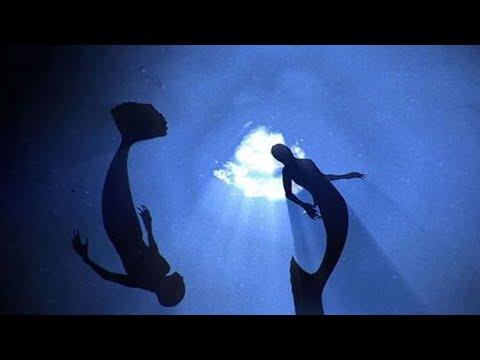 Mermaid found after tsunami vidoemo emotional video unity for Mako mermaids dailymotion