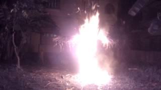 Nerapora 2015 Happy Holi