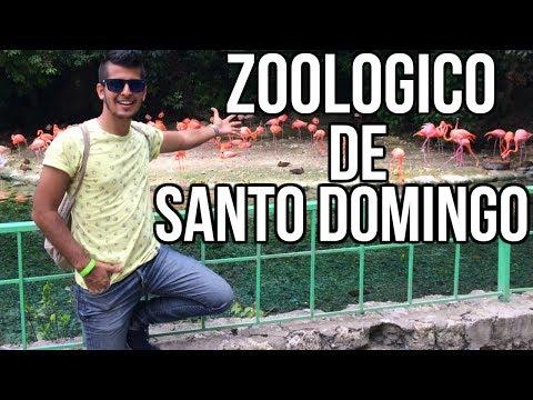Xxx Mp4 VLOG ASÍ ES EL ZOOLOGICO NACIONAL DE SANTO DOMINGO LUIS VALLEJO 3gp Sex