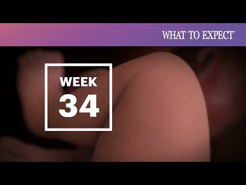 Xxx Mp4 34 Weeks Pregnant What To Expect 3gp Sex