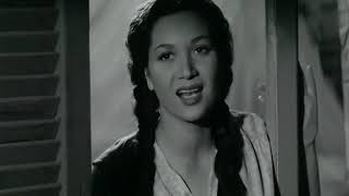 فيلم الشيخ حسن