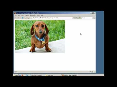 Xxx Mp4 How To Insert An Image In A Webpage HTML XHTML 3gp Sex