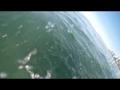 Susto com Tubarão Branco em El Porto Beach