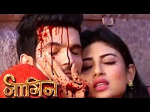 Xxx Mp4 Shivanya Ritik To Get BRUTALLY KILLED Last Episode Of NAAGIN 3gp Sex