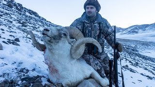 Hunting in Tajikistan Pamir Marco Polo sheep www.hunting.az