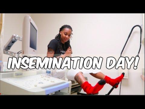Xxx Mp4 Insemination Day TTC IUI Journey Episode 6 3gp Sex