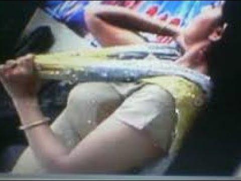 Xxx Mp4 Kavya Madhavan Nipple Slip Indian Actress Kavya Hot Boobs Shape 3gp Sex