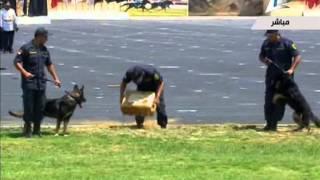 """عرض """"الكلاب البوليسية"""" في حفل تخرج كلية الشرطة"""