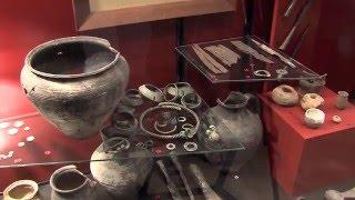 Piła/Grabionna: sadownik odkrył skarb w ziemi