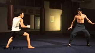 Donnie Yen vs Bruce Lee | Herry Petter