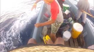 Download Fishing in Manus 3Gp Mp4
