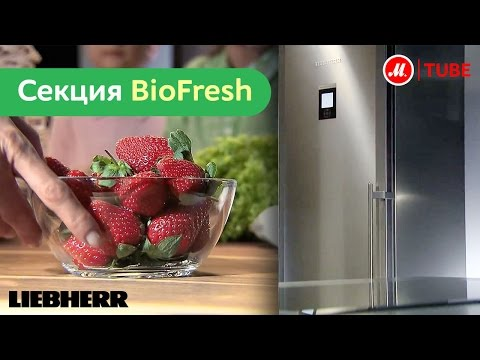 Секция BioFresh – больше свежести для ещё большего наслаждения
