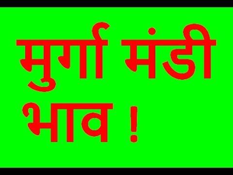 Xxx Mp4 दिल्ली मुर्गा मंडी भाव Amit Nagpal 3gp Sex