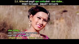 new nepali lok dohori geet 2073,2017 timi ramro dhaka cholima