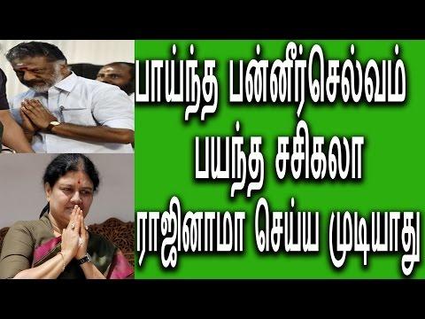 பாய்ந்த ஓ பன்னீர்செல்வம் பயந்த சசிகலா O Panneer Selvam Aggress To Sasikala Latest Politics News