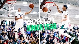 Andre Ball Junior Year FULL HIGHLIGHTS - Ball Brothers Cousin Has BOUNCE!