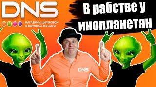 Отзыв о работе в ДНС (DNS) Или почему не стоит работать в ДНС. Тайна бренда Dexp