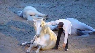 Jean-François Pignon. London International Horse Show 2015