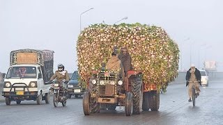 the tractor train only in Pakistan