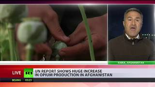 Afghan opium production almost doubles in 2017 – UN