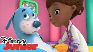 Dottoressa Peluche - Ospedale dei giocattoli - Buon compleanno Boppy - Dall