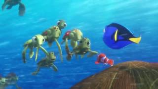 Finding Dory -  Turtles