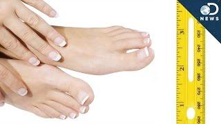 Why Do Fingernails Grow Faster Than Toenails?