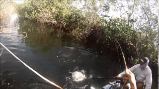 Canoe Fishing HELL'S BAY Small TARPON