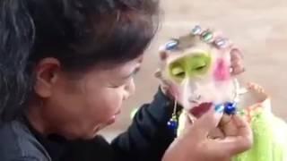 ronibali - Monyet Berhias TOP MARKOTOP
