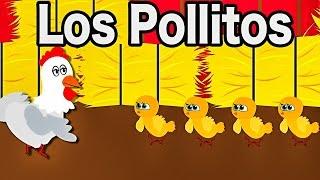 La Canción de Los Pollitos | Dicen Pío Pío Pío | Videos Infantiles | Rondas
