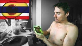 Avocado Mukbang. Are Thai Avocados Terrible? Taste Test